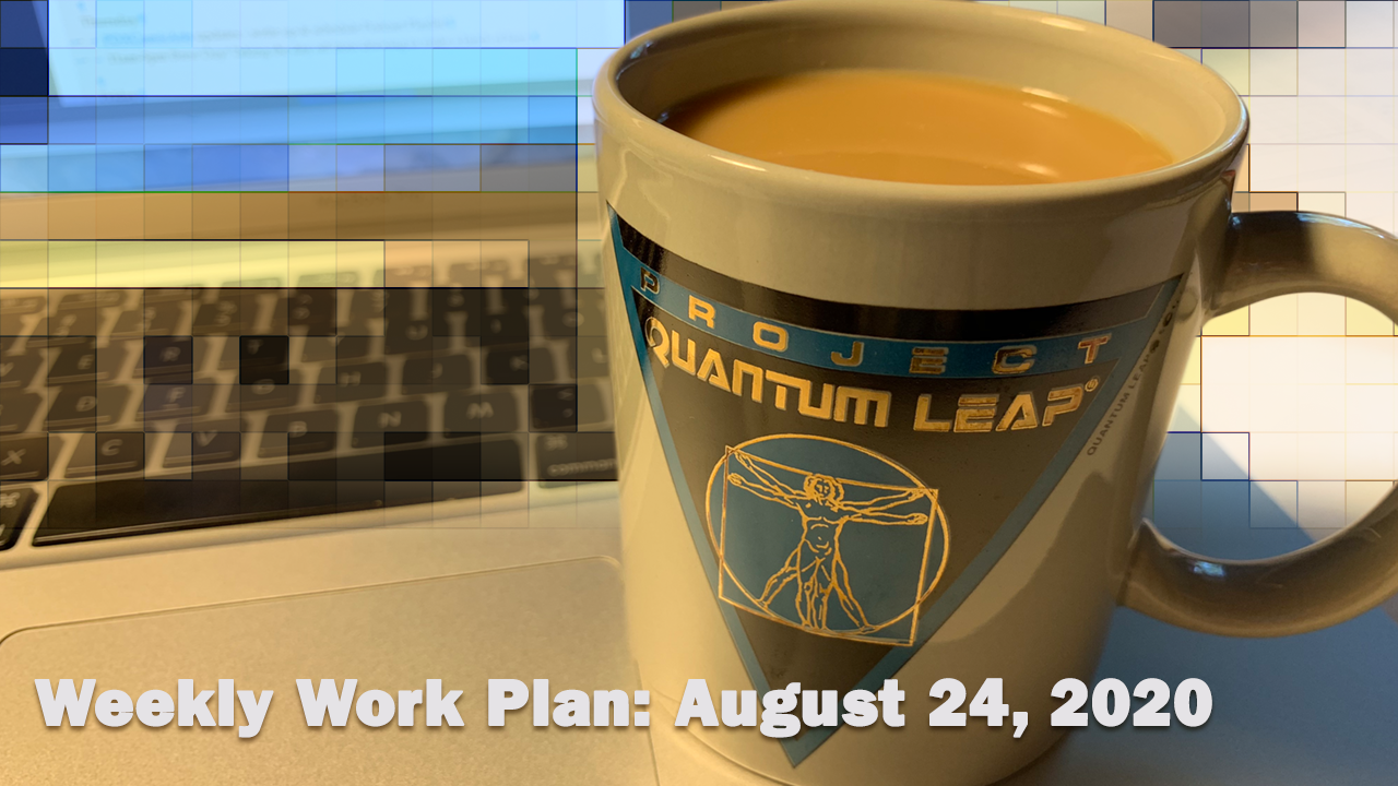 Weekly Work Plan August 24 2020